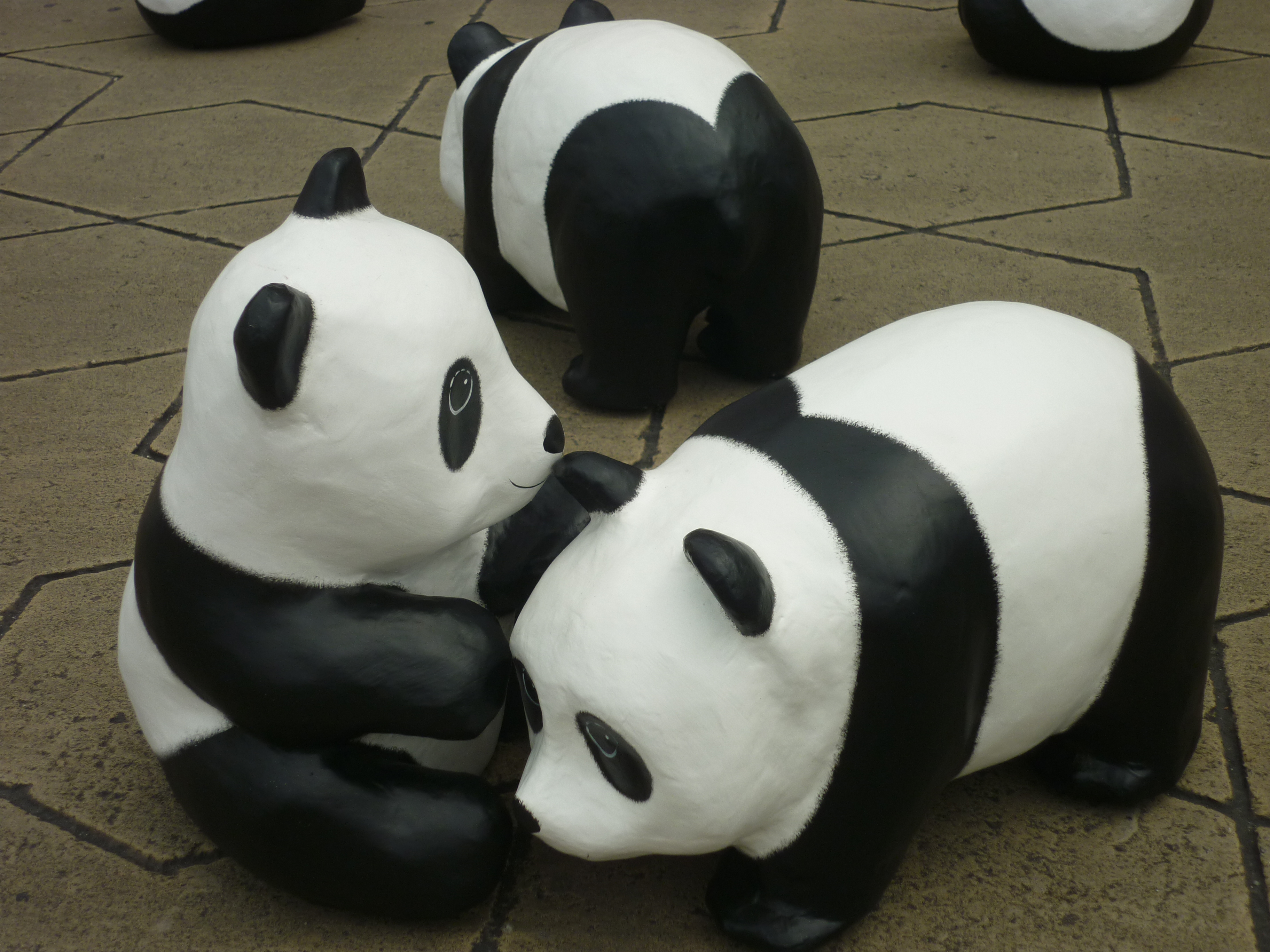 Pandas date in Brisbane